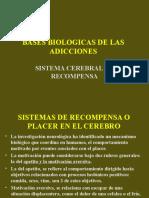 Bases Biologicas de Las Adicciones