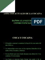 coca. ppt