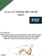 190670045-Anatomi-Tulang-Dan-Sendi-Bahu.pptx