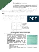 Deshidratacion y Rehidratacion Dra Yulennys López (1)