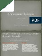 Sinapsa i sinapti-ìka transmisija.pdf