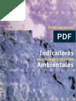 Indicadores-cal-y-gest-ambientales-Gross-Hajek.pdf