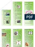 TRIPTICO SOBRE EL DENGUE.pdf