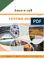 Informe Mineral Co 2007