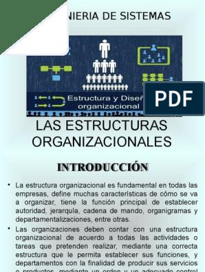 Las Estructuras Organizacionales Ok