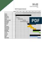 Cronograma Construccion FINAL 1005