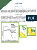 Resumo Bioquímica Enzimas.doc