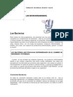 Apuntes Los Microorganismos (1)