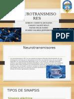 Neuro Transm is or Esp Pt