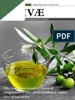 Olive Oil Paper