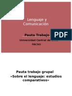 Pauta Trabajo Lenguaje y Comunicacion