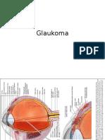 13. Glaukoma.pptx