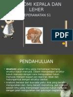 Anatomi Kepala Dan Leher s1