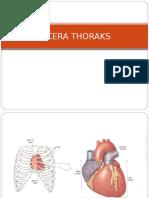 anatomi jantunggg