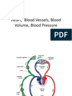 2015-Physiological feedback in CVS.pdf