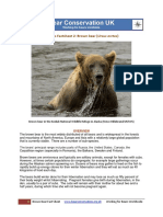 Bear Conservation Factsheet