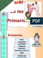Etapas-Perfil Primarios