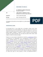Informe Rinconada.docx