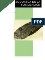 Geoquímica de La Fosilización