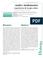 Celulas Madres Paper