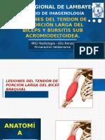 Lesiones Del Tendon de La Porción Larga Del Biceps y Bursitis Sub Acromio Subdeltoidea.