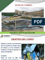 Diapositivas Manejo de Cal y Cianuro.pptx