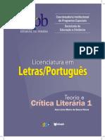 Teoria e Critica Literaria