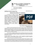 Estructura de Informe Eia Final.