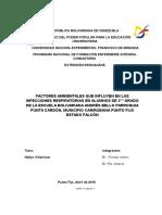 FACTORES AMBIENTALES.docx