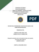 13-TESIS.IQ011.F34.pdf
