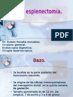 B13.- Bazo