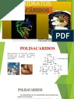 POLISACÁRIDOS[1]