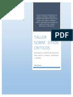 Taller Sobre Sitios Criticos