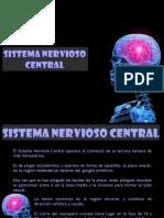 sistemanerviosocentralembriologia-150506025537-conversion-gate01.ppt