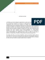ANÁLISIS LITERARIO (Autoguardado).docx