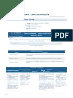 PERFIL_COMPETENCIA_GARZON.pdf