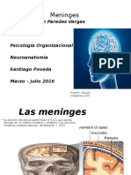 MENINGES-Tannia.pptx