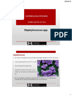 Clase 01- Enero 28- Staphylococcus Streptococcus Enterococcus.pdf