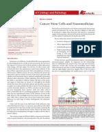Cancer Stem Cells and Nanomedicine
