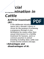 Artificial Insemination in Cattle