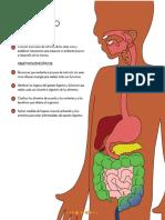 nutricion bueno para sexto.pdf