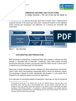 Bloemendaal_Technical_commercial_natural_gas_value_chain_2013.pdf