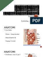 Referat Anatomi, Fisiologi, Dan Patologi Usus Halus
