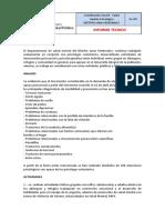Informe Brigadas Salud Mental Zona 6
