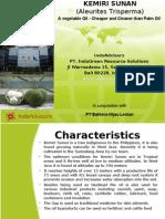 Kemiri Sunan - Biofuel crop
