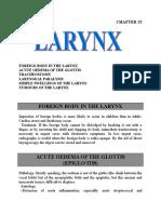 11 Larynx