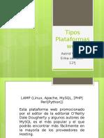 Tipos Plataformas web.pptx