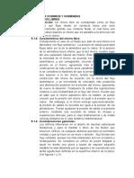 MECÁNICA DE CHORROS Y CHIMENEAS.docx