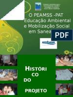 PPT 1 apresentação do peamss