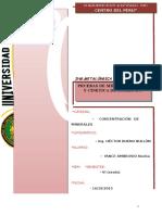 informe molienda BUENO.docx